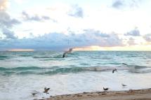 mia-beach-1