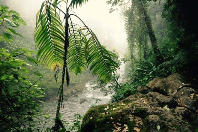 Waterfall9