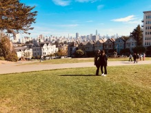 paintedladies16